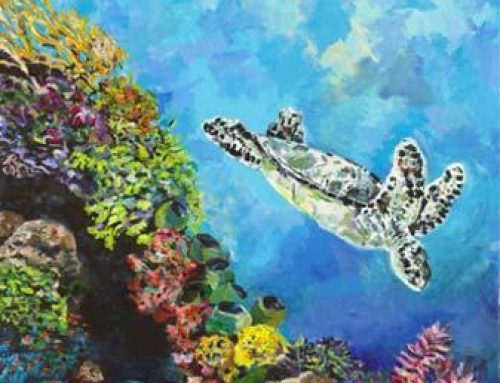 Sea Turtle Tuesday: The Beloved Sea Turtle
