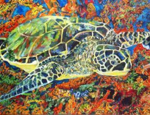Sea Turtle Tuesday: Tangerine Dream