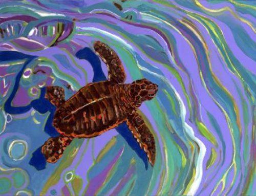Sea Turtle Tuesday: Little Turtle Bambinos. Awwwwww