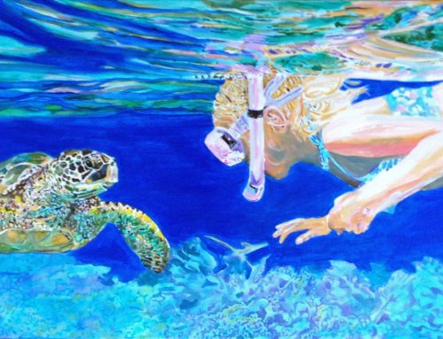 Sea Turtle Tuesday:  Love at first sight.